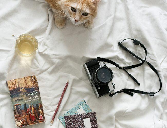 Lifestyle : livre, cinéma. tea & poppies vous livres ses coups de coeur culturels de l'été 2017
