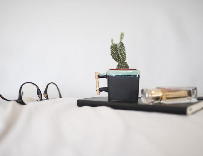 photo, lifestyle, cactus, tasse carré, lunette, Izipizi
