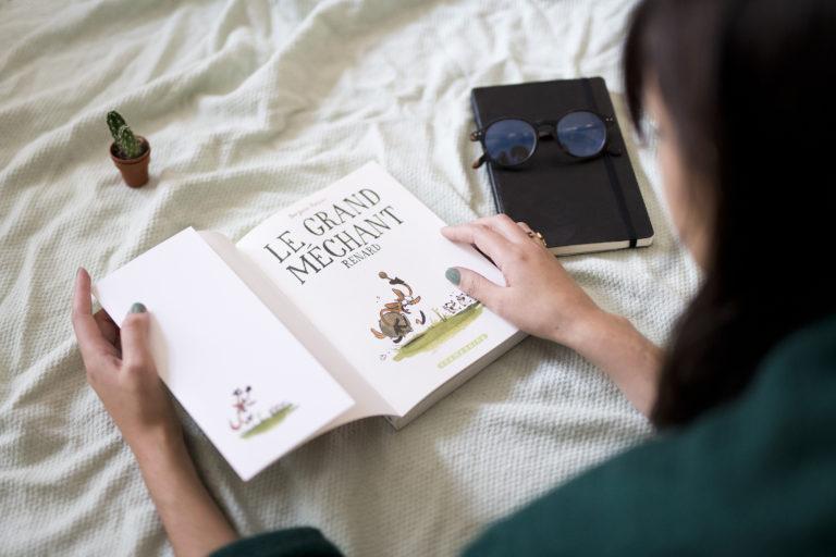 lecture, BD, bande dessinée, Le Grand méchant renard, livre