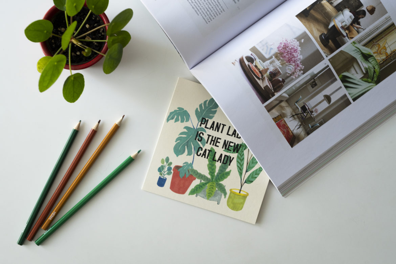 photo, magazine, plantes