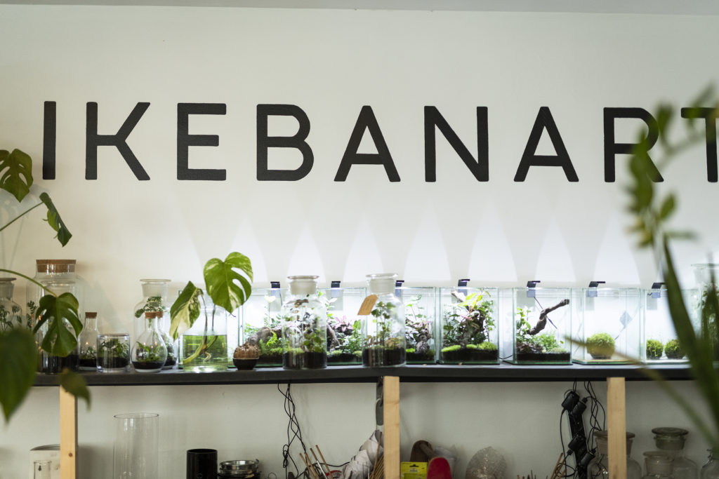 photo, boutique, Ikebanart, fleuriste, Paris