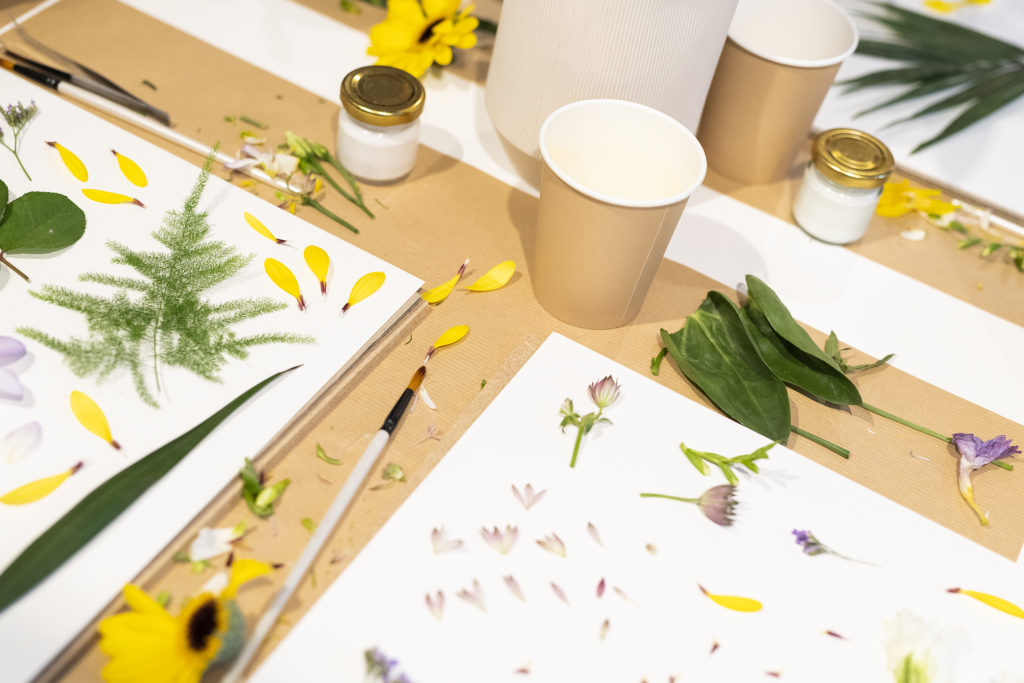 Atelier Herbarium, photo, faire sécher des fleurs