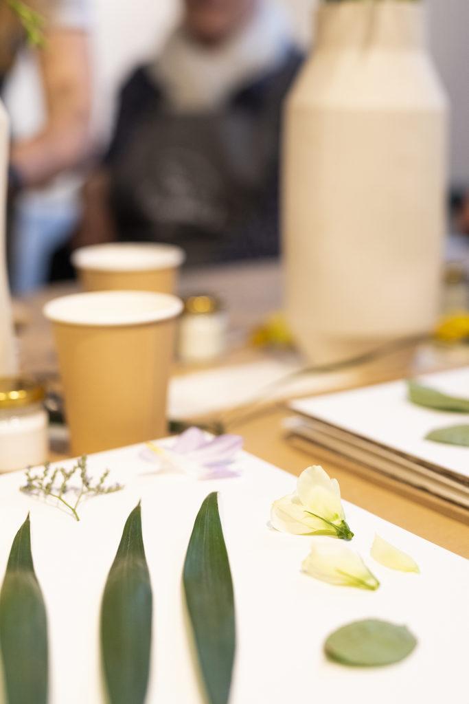 photo, cadre floral, herbarium, atelier